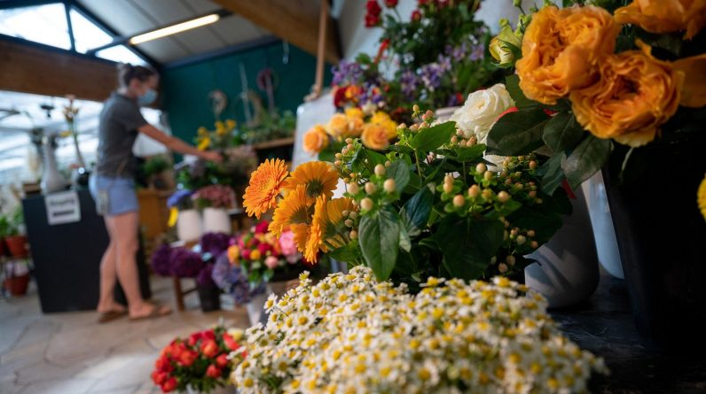 Coronavirus news: Zoos and flower shops - The first federal states loosen restrictions