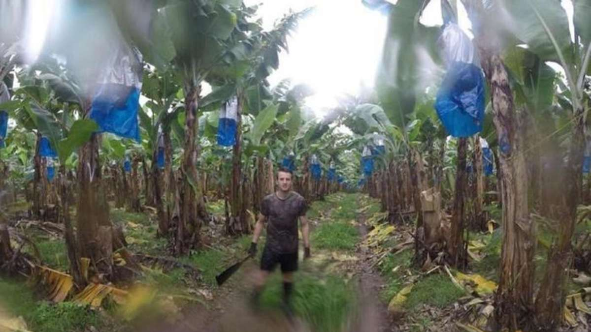 Moritz Born from SV Elz: To pick bananas around half the world