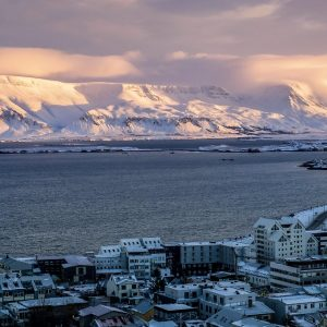 Europe's response to New Zealand: How Iceland succeeded in fighting Corona