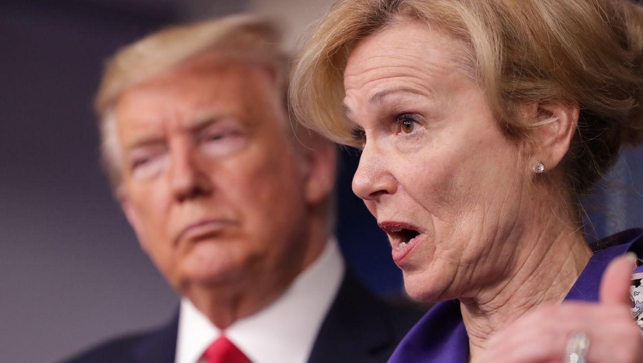 Deborah Birx: Donald Trump's coronavirus advisor will work with air purifier manufacturers in the future