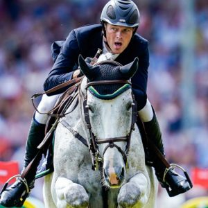 Equestrian sport - the death of eight German horses after contracting herpes - sport