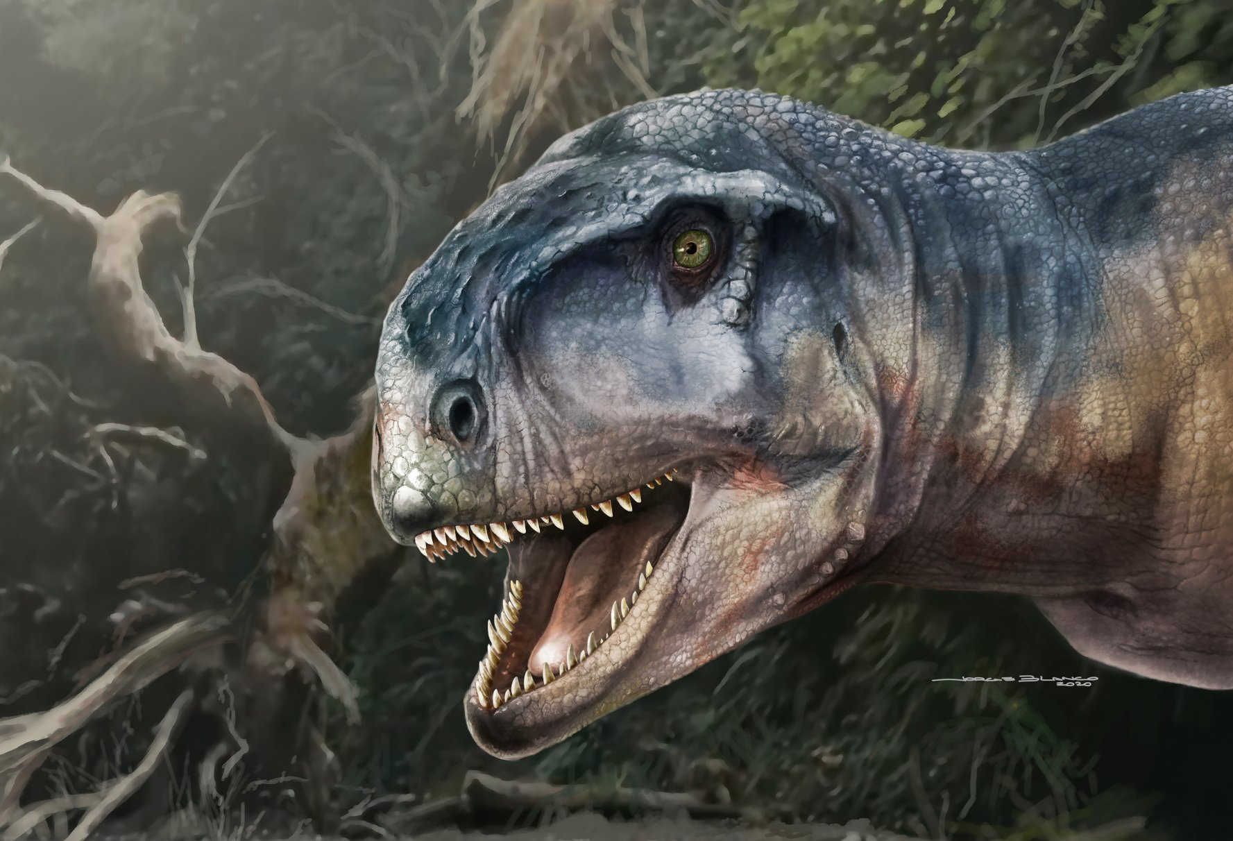 """Paleontology of new predatory dinosaurs: """"the fearsome"""""""