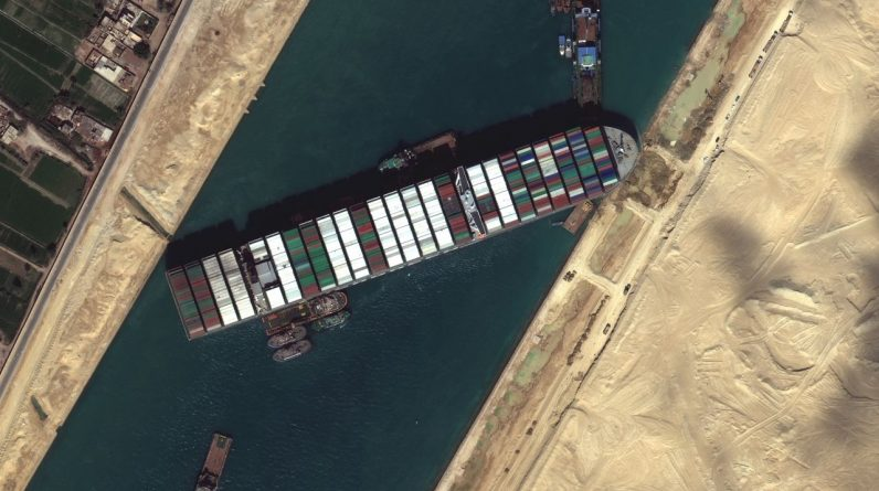 The Suez Canal: 130,000 sheep stuck - animal rights activists warn of a disaster
