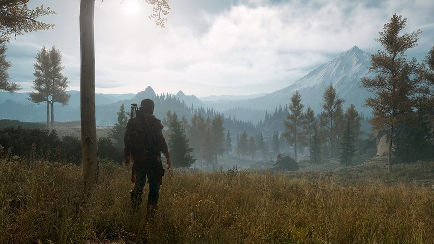 A PS5 remake of The Last of Us, not a continuation of Days Gone