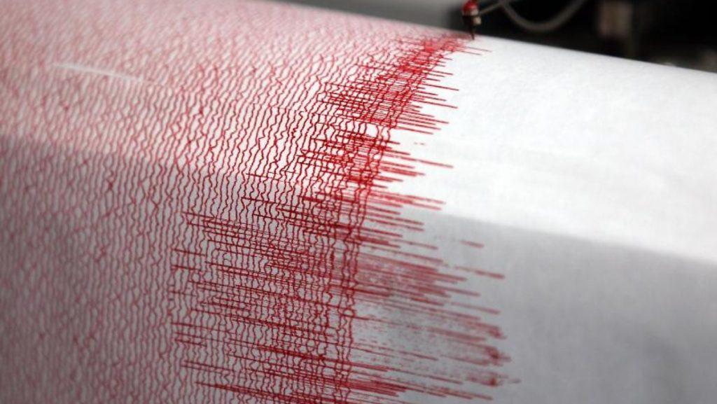 Raise a tsunami warning: Earthquake frightens New Zealand