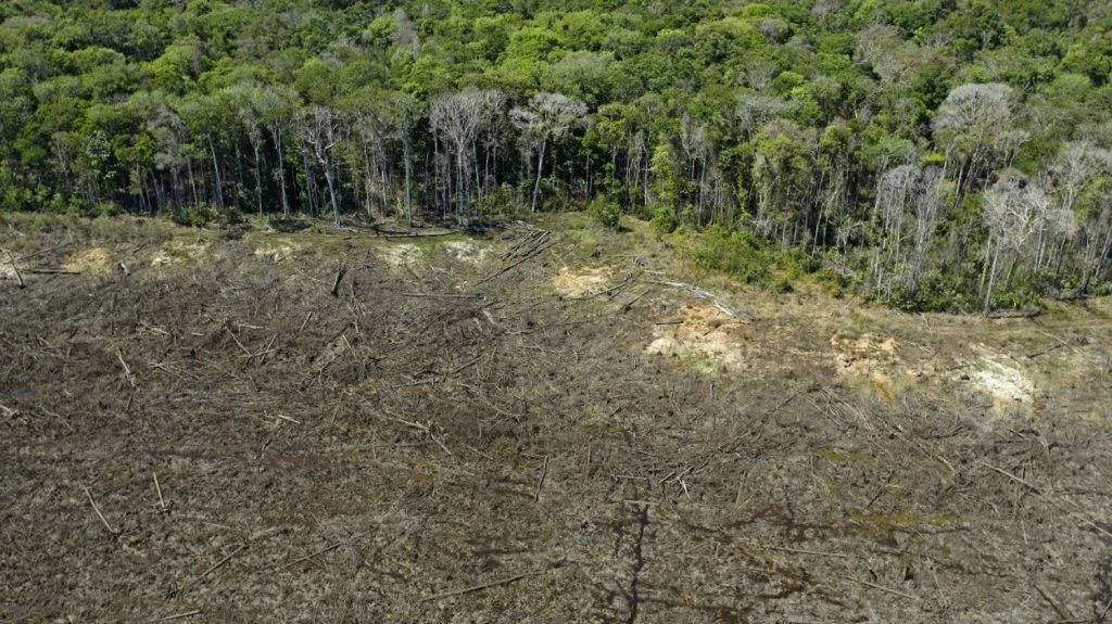 The Amazon rainforest now emits more carbon than it absorbs