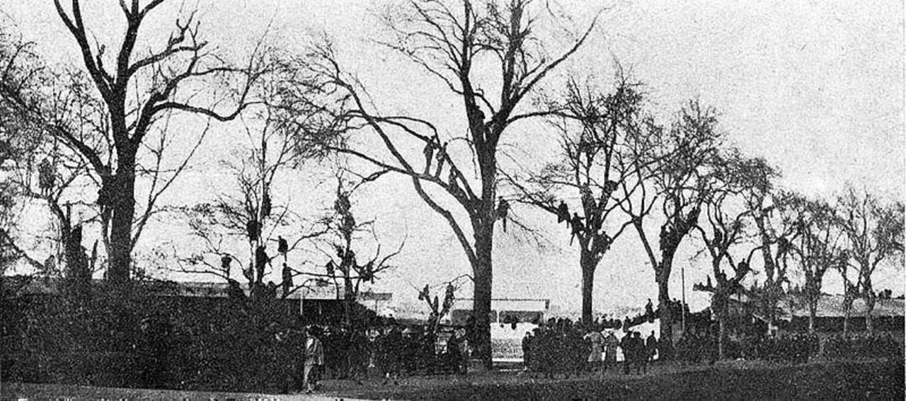 On Sunday, January 18, 1925, spectators climbed into the trees to enjoy the movie All Blacks.