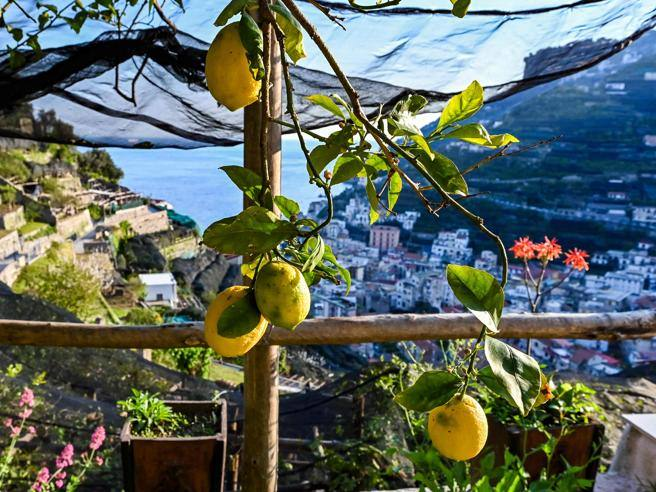 """""""The cities of the future are inspired by Paris.  And to your Amalfi Coast »- Corriere.it"""