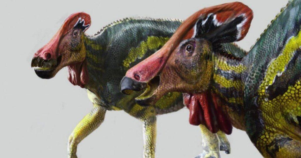 Sciences.  A new peaceful dinosaur has been identified: Tlatolophus galorum