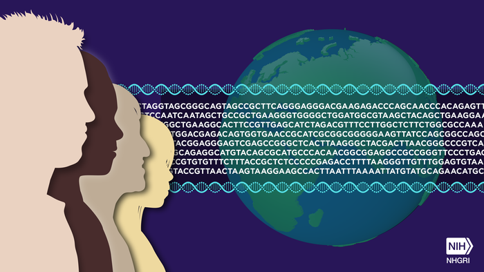 Human DNA Map Completed - Biotechnology