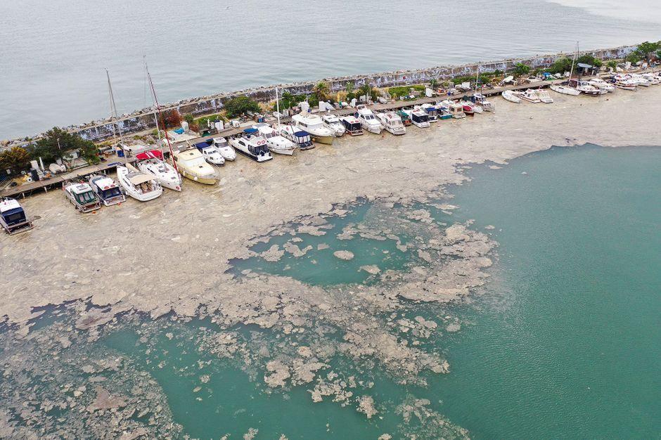 Sea mucus invades the coast of Turkey