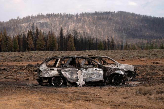 The remains of cars destroyed by the Bootleg fire, near Betty, Oregon on July 19, 2021.