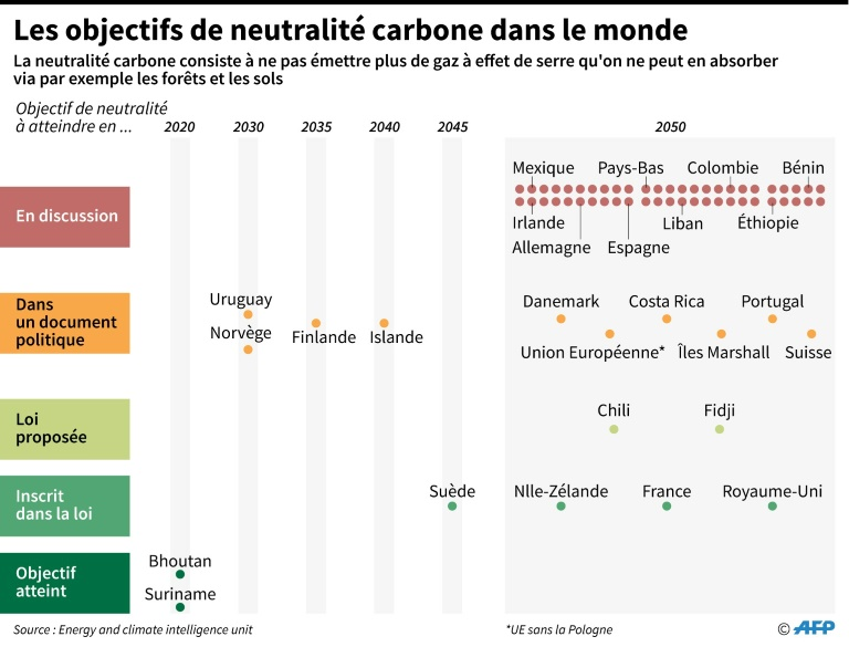Carbon neutral targets around the world (AFP / Archives - Simon Malvato)