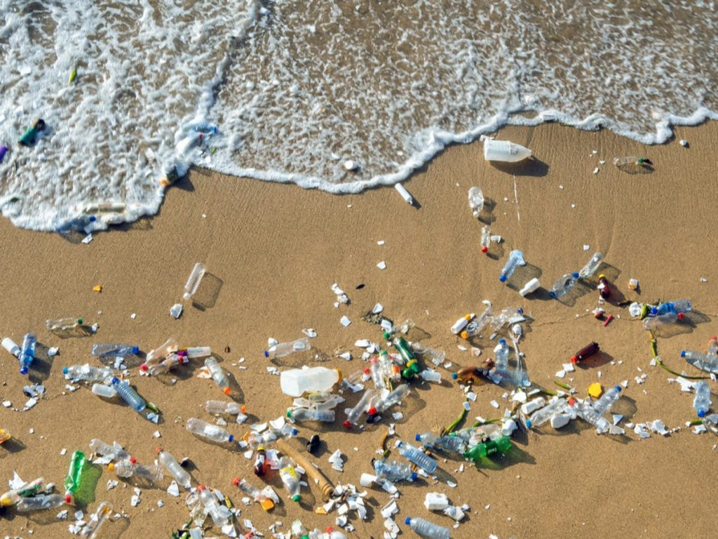 New Zealand aims to ban most single-use plastics by 2025