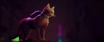 Stray: A long game trailer and release period for the captivating adventure game with a cat, scheduled on PS5, PS4, and PC