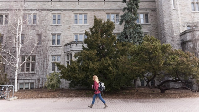 The University of Guelph offers a new Bachelor's degree in Environment and Aboriginal Knowledge