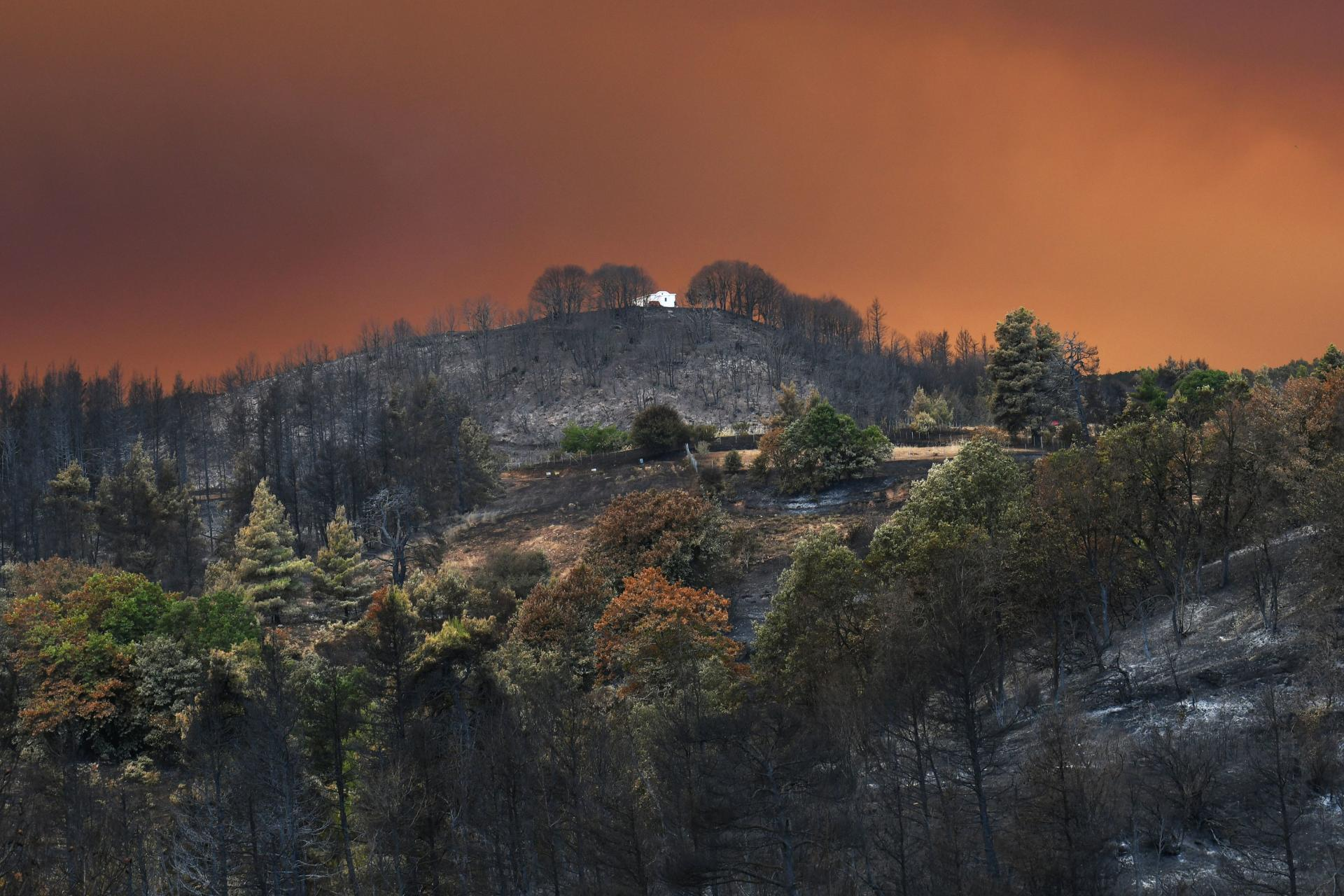 During a fire on the island of Evia, Greece, on August 8, 2021.