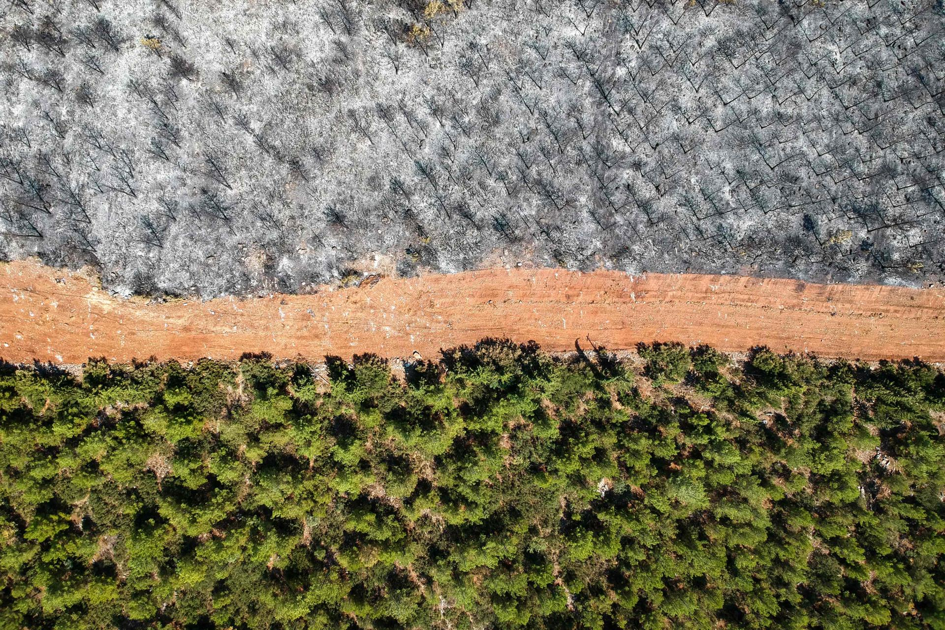 Aerial view taken in Mugla region, Turkey on August 7, 2021. This forest path was like a fire.
