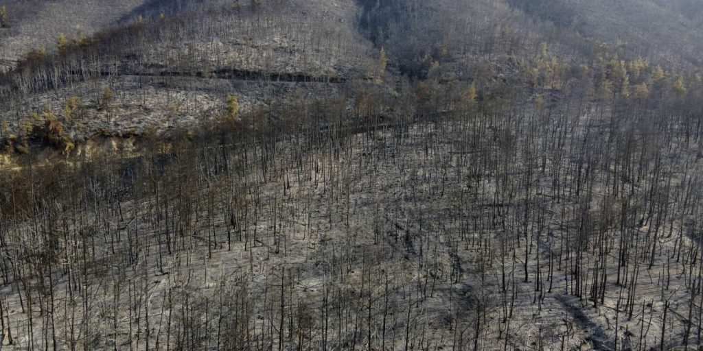 In Greece, firefighters began controlling fires on the island of Evia after nine days of 'manual work'
