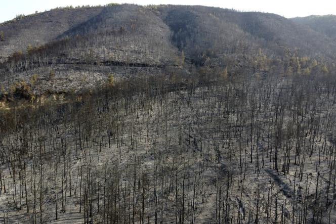 A mountain burned as a result of a forest fire in the village of Papadis, on the island of Evia, 160 kilometers (by road) north of Athens, on August 10, 2021.