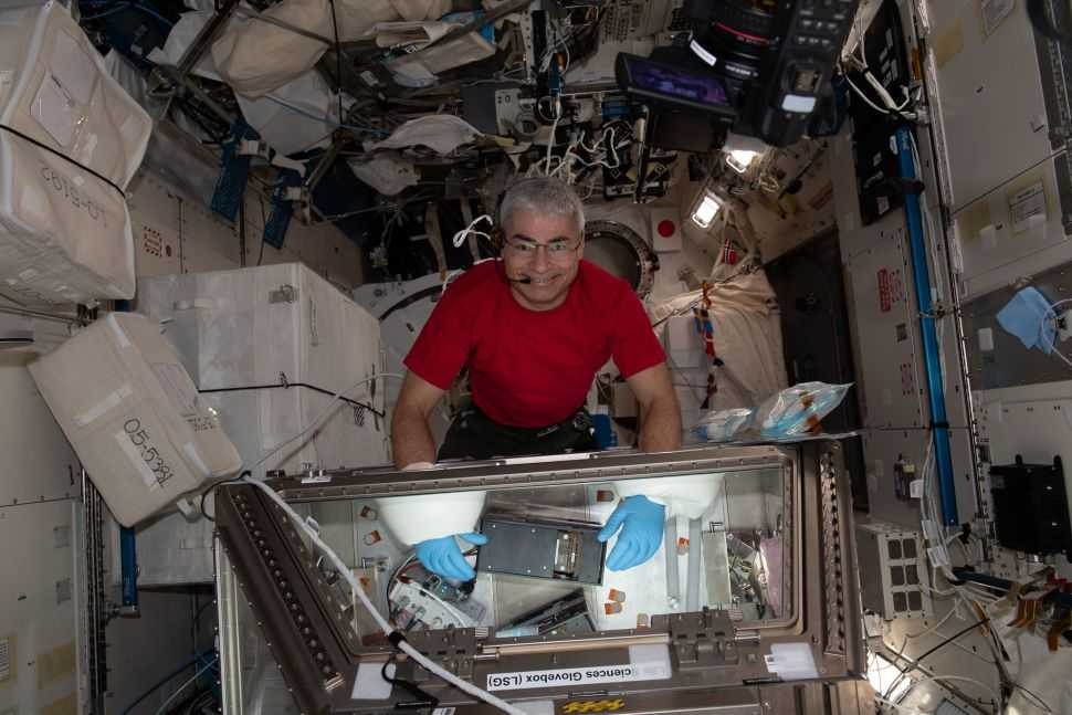 Près D'un An Dans L'espace : L'astronaute De La Nasa