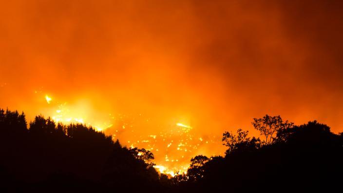 Le feu dans les montagnes de Sierra Bermeja le 12 septembre.