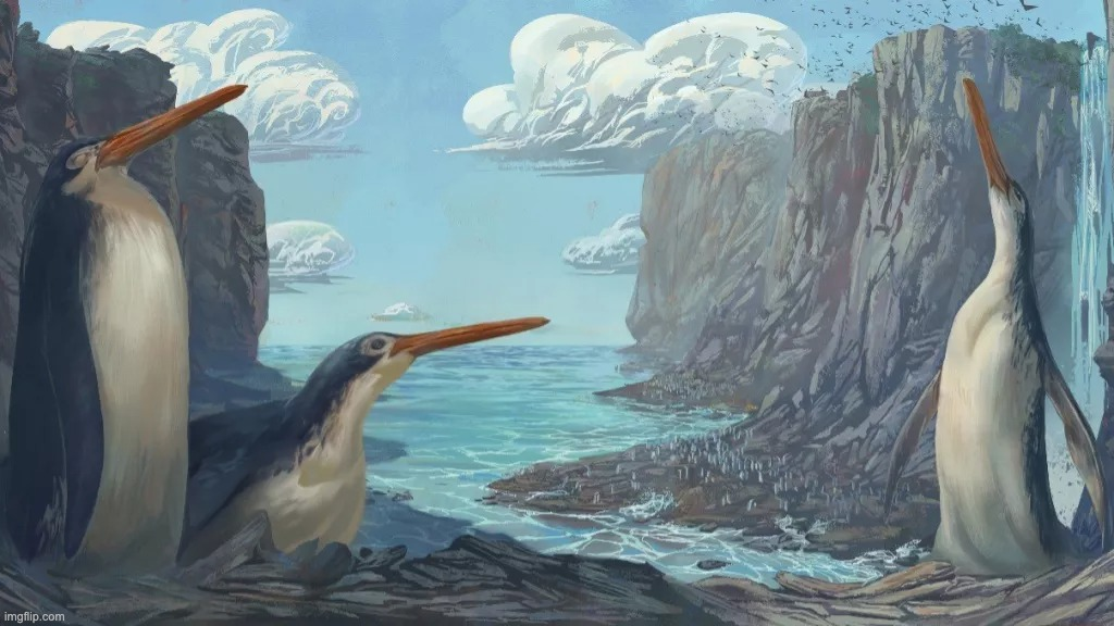 What do we know about this ancient giant penguin discovered in New Zealand?