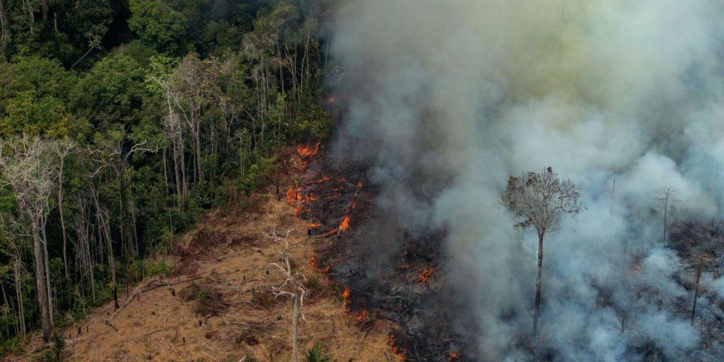 NGO files 'crime against humanity' complaint against Bolsonaro